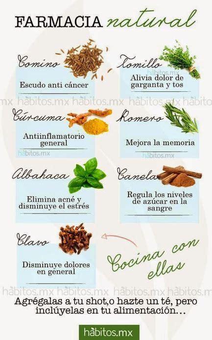 Farmacia Natural . Las especias , con las hierbas ...