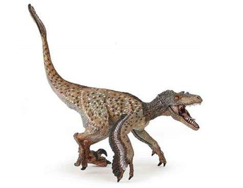 Feathered Velociraptor  2020 version  by Papo   Dan s ...
