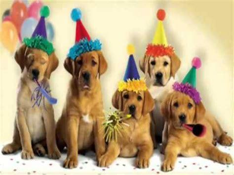 Feliz Cumpleaños   YouTube