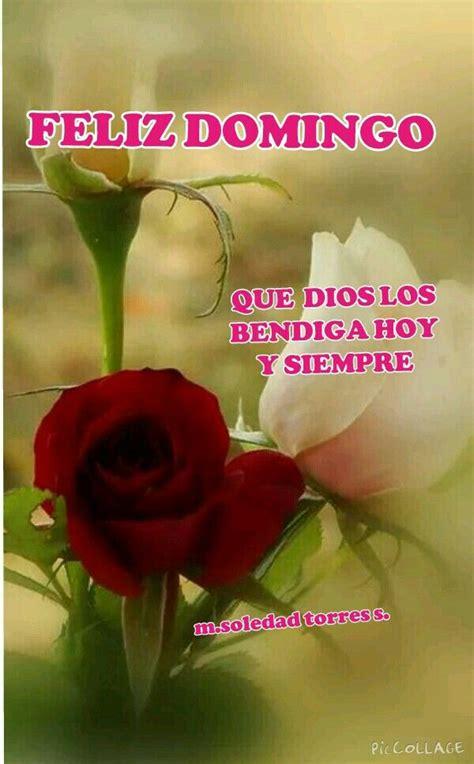 Feliz domingo | Buenos dias con flores, Flores bonitas y ...