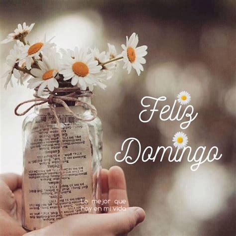 Feliz Domingo Pinterest   BonitasImagenes.net