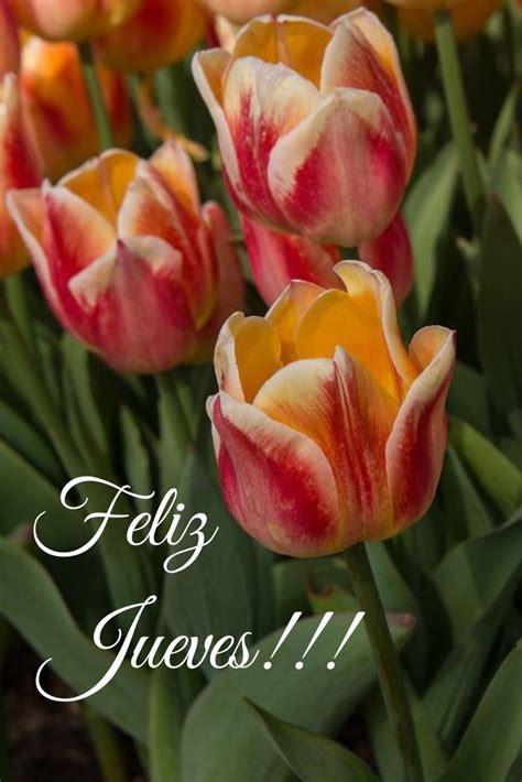 Feliz Jueves / Feliz Día / Jueves / Thursday / Happy ...