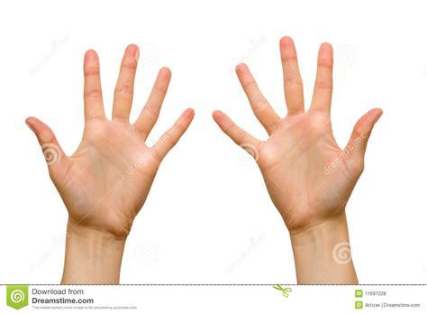 Female hand palms stock photo. Image of five, closeup ...