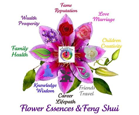Feng Shui and Flower Essences: We are creating a more ...