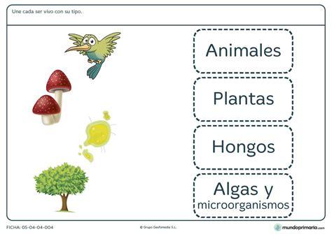 Fichas para IMPRIMIR para NIÑOS de primaria | We love ...