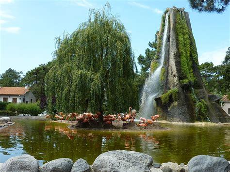 Fichier:563   Zoo de la Palmyre   Les Mathes.jpg — Wikipédia