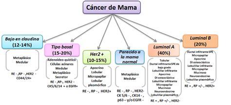 Figura 3. Clasificación Molecular del Cáncer de mama ...