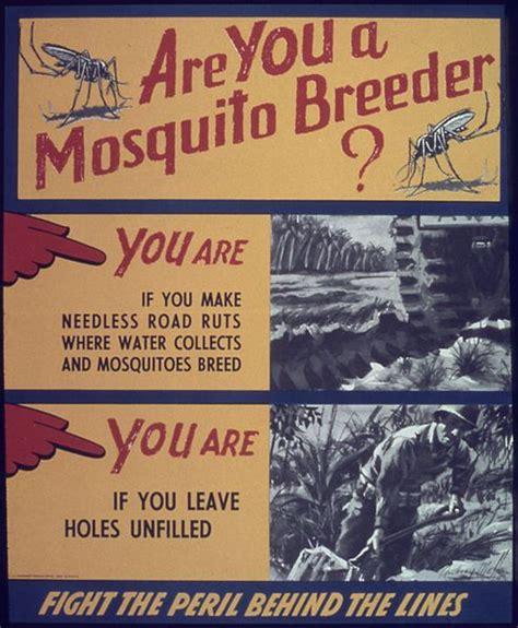 File: Are you a mosquito breeder    NARA   513877.jpg ...