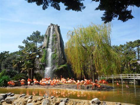 File:La palmyre zoo, waterfall.JPG   Wikimedia Commons
