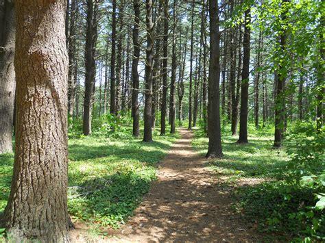 File:Maudslay running trail 1.JPG   Wikimedia Commons