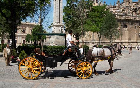 File:Sevilla   Plaza del triunfo   Coche de Caballos ...