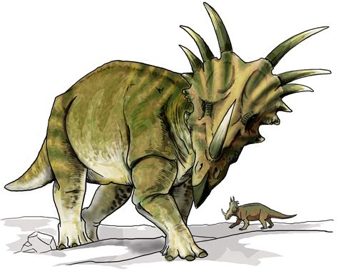 File:Styracosaurus dinosaur.png   Wikipedia
