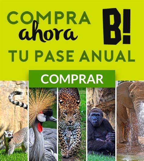Fin de Semana: En el Bioparc de Valencia