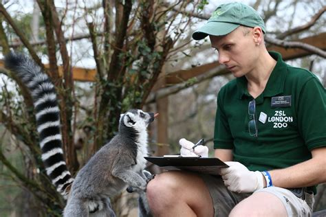 Find a Zoo Internship That s Right for You