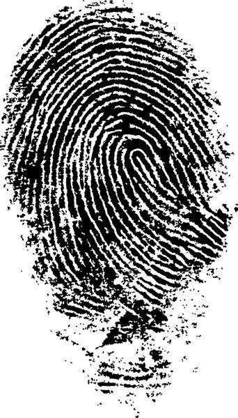 Fingerprint free vector download  92 Free vector  for ...