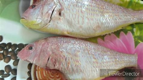 Fish fry| Rani fish| south indian traditional recipes ...