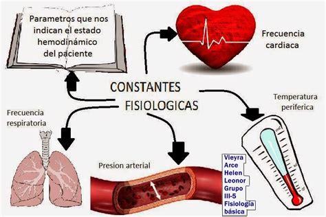 Fisiología Básica: Mapa mental, mapa conceptual ...