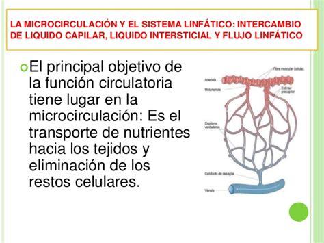 Fisiología cardiocirculatorio