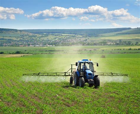 Fitorremediação de solos contaminados por herbicidas ...