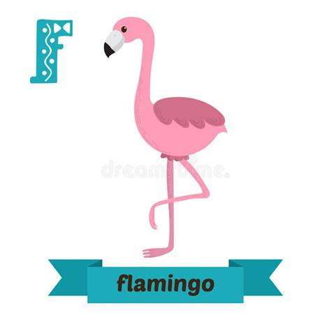 Flamenco Letra De F Alfabeto Animal De Los Niños Lindos En ...