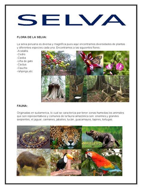 Flora de La Selva