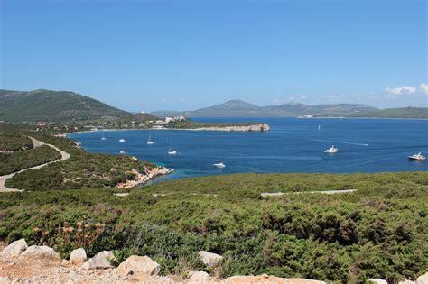 Flora e fauna del Mediterraneo, una ricchezza di ...