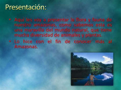 Flora y fauna del amazonas