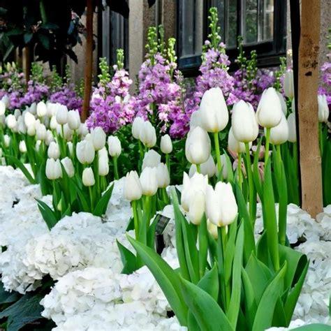 Flores bonitas que no deben faltar en el jardín