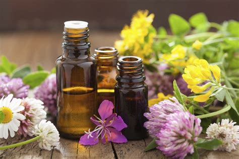 Flower Essence Therapy   Dr. Darla Nofziger, ND