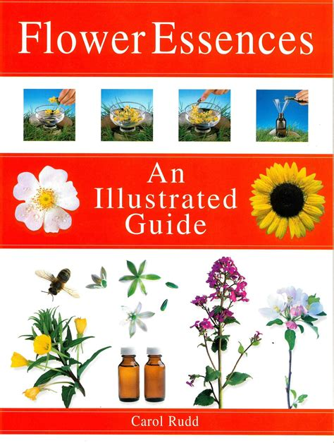 Flower Essences An Illustrated Guide   The British Society ...