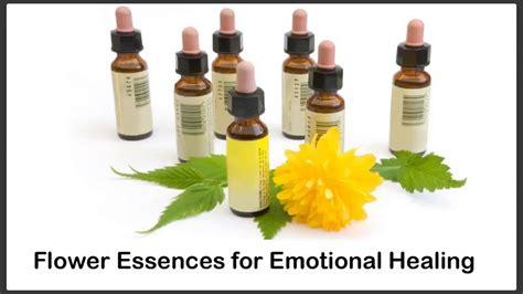 Flower Essences for Emotional Healing: Emotional Healing ...