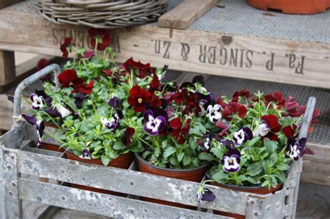 Flower shops of Barcelona | Flirty Fleurs The Florist Blog ...