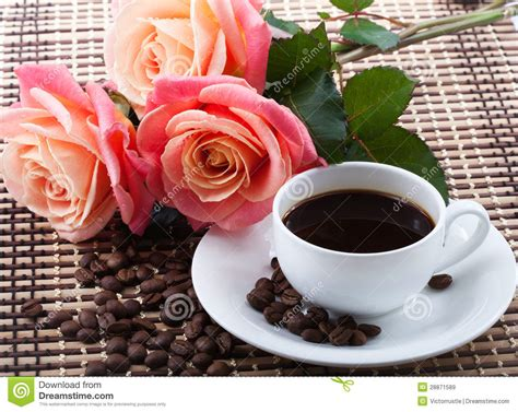 Flowers and coffee stock image. Image of drink, coffe ...