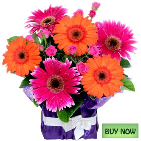 Flowers Online Gold Coast   Flower delivery Botanique ...
