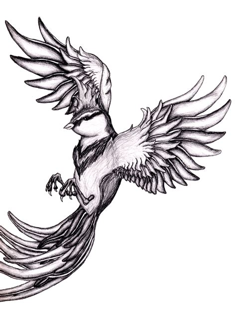 Flying Bird Drawing | Free download on ClipArtMag