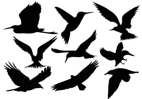 Flying Bird Silhouette Vectors   Download Free Vector Art ...