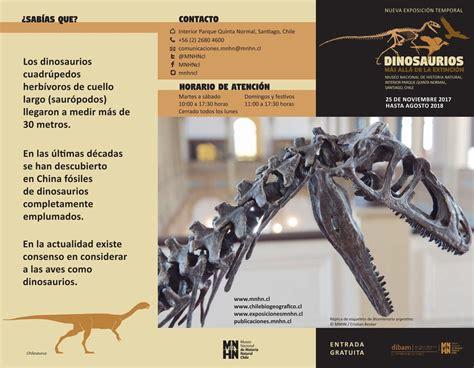 Folleto Dinosaurios by Museo Nacional de Historia Natural ...
