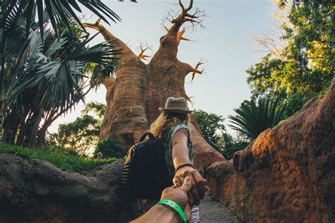 #FollowMeTo Bioparc Fuengirola   Huge fake Baobab. Canon ...