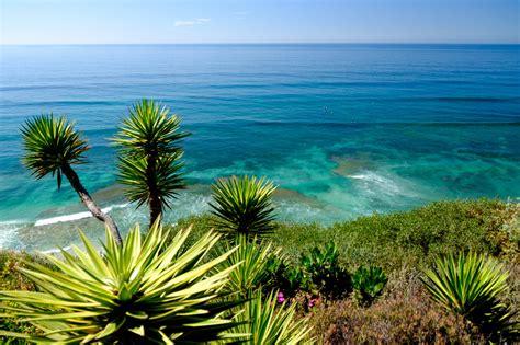 Fondos de pantalla : Árboles, paisaje, mar, Flores, jardín ...