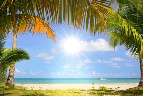 Fondos de pantalla : costa, barco, mar, palmeras 5761x3873 ...