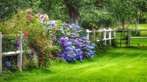Fondos de pantalla : Flores, Francia, Las flores, jardín ...