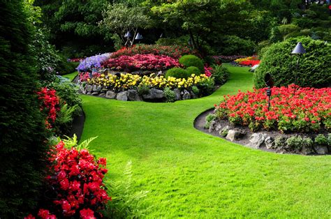 Fondos de pantalla : paisaje, Flores, naturaleza, patio ...