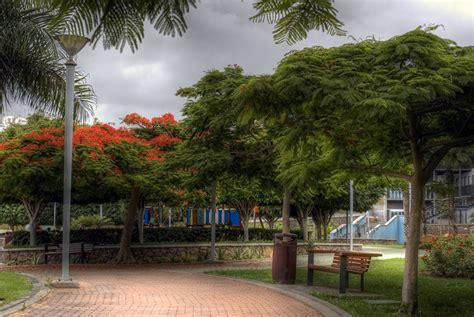 Fondos de Pantalla Parque España Banco  mueble  árboles ...