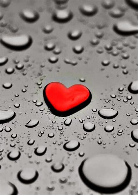 Fondos Para Watsapp Con Detalles De Amor   Imagenes Y Mensajes