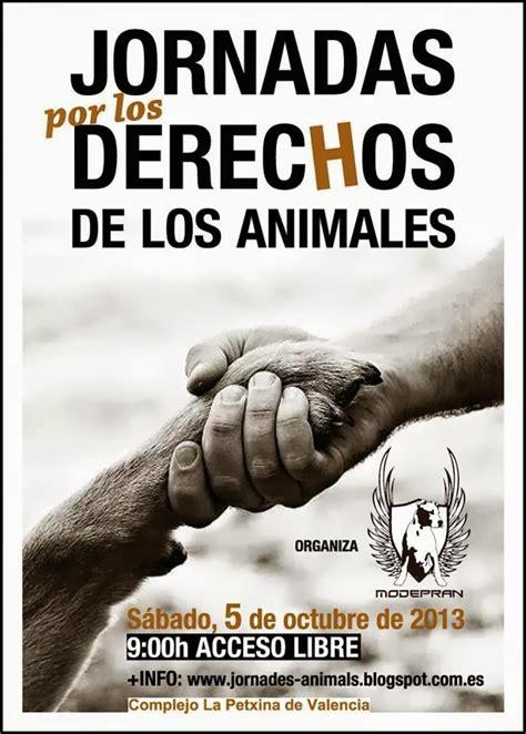 Foro Anual de Entidades Protectoras de Animales de la ...