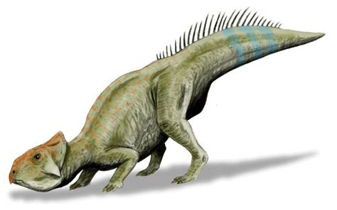 Fort Macleod family finds rare dinosaur fossil | Fort ...