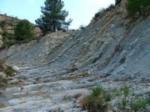 Fósiles   Yacimientos   Momentos clave   Región de Murcia ...