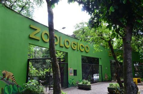 Foto de Bosque Guarani zoo, Foz do Iguaçu: entrada do ...