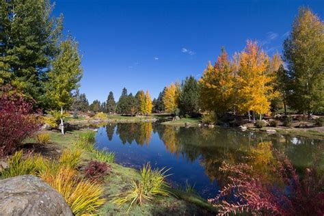 Foto de Running Y Ranch Resort, Klamath Falls: The Ruddy ...