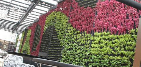 Foto: Muro Verde Natural de Grupo Zykma #76568   Habitissimo